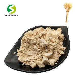 Natural cocodimonium hydroxypropyl  wheat   protein  for health cosmetic and pet  hydrolyzed   wheat   protein