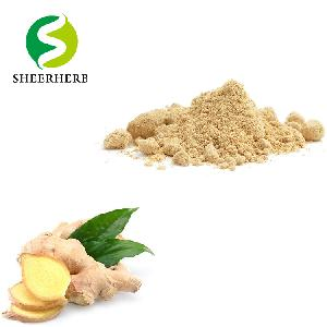 Black Ginger Extract Powder Pure Natural Ginger Extract Red ginger powder