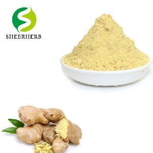 Instant Ginger Juice Powder ginger extract powder organic ginger powder