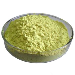 Use in cosmetic best quality natural sources of quercetin powder price