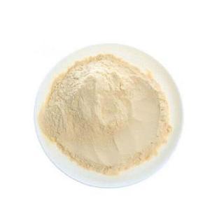 Dried yellow lemon peel tea  powder  yeast lemon balm  juice  extract keto  mix   powder
