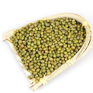 2019  season Chinese  mung   bean   seed s for supermarket
