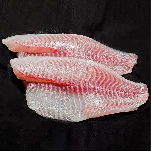 Fresh Frozen Tilapia fish fillet price