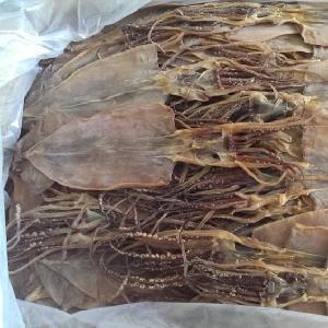 New Process Good Quality 5 Times Socking Dried Squid Dry Squid