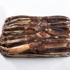 Frozen Good Taste W/R Illex Squid argentina illex squid100-150,150-200,200- 300 , 300 -400,400-600