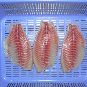Frozen Tilapia Fillet Price With Skin On