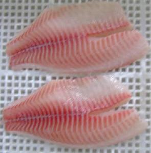 Ready Stock Frozen Tilapia Fish Fillet with Good Price