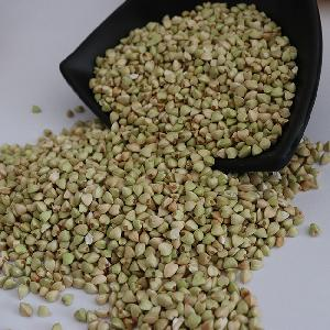 Hot selling  hulled   roasted   buckwheat  kernels with good price