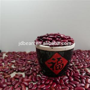 Hot sale quality Natural Brown English red kidney bean with Best quality