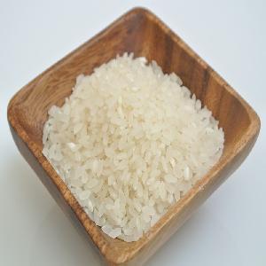 ROUND RICE- JAPONICA/SUSHI/CALROSE RICE 5% BROKEN NEW CROP