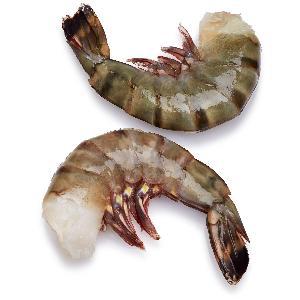 Fresh Frozen Red Lodster/Shrimps/Prawns/ black tiger shrimps/ Vannamei White Shrimp