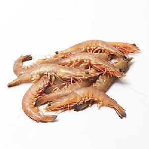 Sea Caught Prawns/Seafood/Wild Shrimps/Prawns for Sale