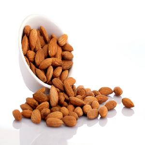 Best Price food grade Organic Apricot Kernel Agriculture Nuts