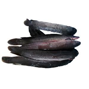 Fresh Frozen Catfish Supplier in China with all sizes
