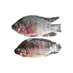bulk packaging and fish product type cheap  frozen  tilapia fish