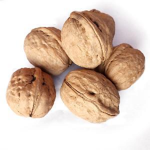 Quality Dried Walnuts Shelled   Unshell / Walnut kernel