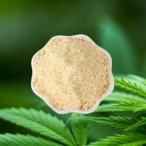 95% organic hemp extract Cannflavin A Powder