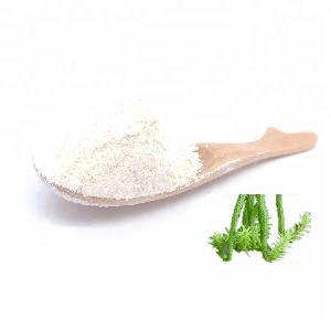 Huperzine Serrate Extract 1%~98% CAS:102518-79-6 and Huperzine A Powder