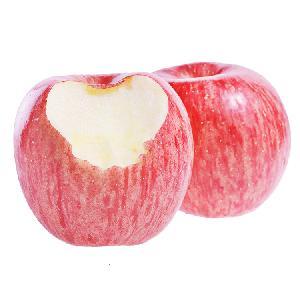 Fresh apple fruit wholesale red fuji apple hot selling