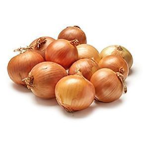 Export  fresh  onion  yellow  onion   small  size per ton price