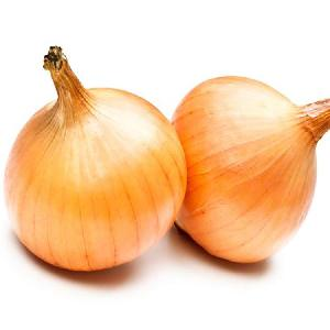 Healthy Food Small Fresh Onion Vegetable Onion Exporters