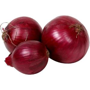 Wholesale fresh small size red onion per ton export price