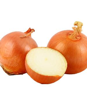 Hot selling yellow onions 25kg bags market price export