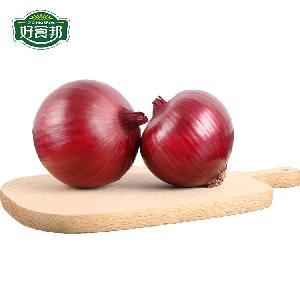 Wholesale Premium Grade New Crop Mesh 100% Natural Fresh Red Onion/onions