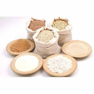 High   Protein   Wheat   Flour  SPB