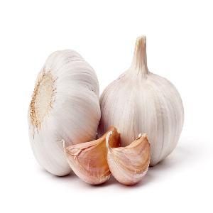 KOSHER / HALAL/ GAP Pure White Garlic