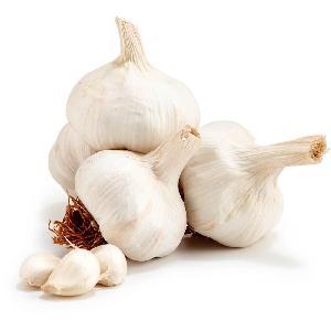 Bulk stock White Galic, 10kg Carton Garlic for sale