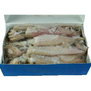 Seafood  product   export  dried squid and dried squid thailand