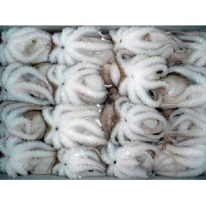 superior frozen baby octopus fresh seafood for sale