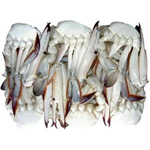 %100 Fresh live Blue Swimming Crab and Frozen Blue Swimming Crab Ready Stock