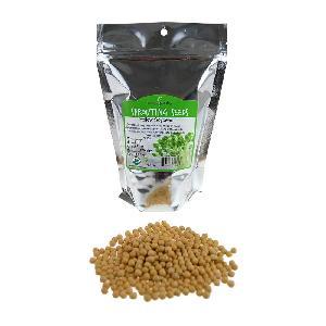 High Quality Soybean/Soya Bean, Soybean Seeds