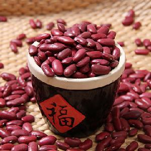 Dark Red Kidney Beans new  crop Long Shape