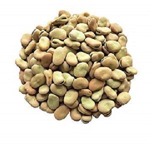 Wholesale grade best organic frozen peeled broad bean
