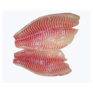Seafood Fram Feeds  Frozen Tilapia Fillet Prices