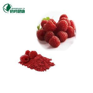 Organic Freeze-dried  pure raspberry Fruit Powder