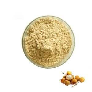 Nutritional Natural Fruit Flavor Powder Organic Longan Extract Juice Powder