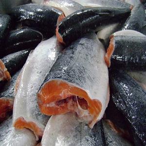 Fresh   Atlantic   Salmon  to Japan, Hong Kong