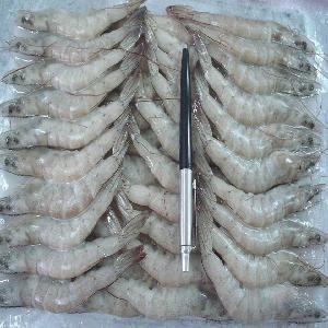 Frozen Vannamei White Shrimp Export Vietnam, Japan,  Korea