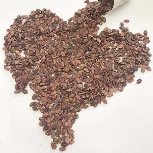 высокое качество дешевая цена шелушеные семена красного арбуза