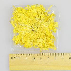 Chinese  Yellow  Chrysanthemum flower Tea