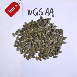 wholesale market price gws aaa pumpkin seeds