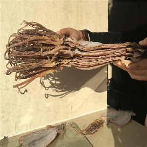 New arriving Good quality 5 times socking Dried Squid Dry Squid from China