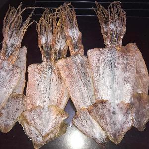High Quality Good Sale Todarodes Squid Dry Squid