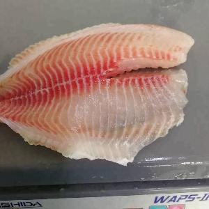 New Season Good Quality Frozen Fillet Tilapia Fish Malaysia