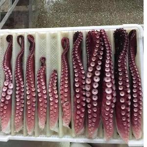 Good price fresh Boiled Frozen Cooked Octopus Tentacles