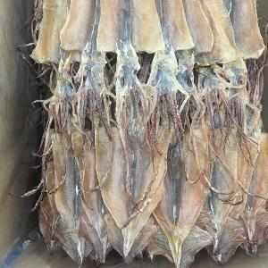 Japan  market Good quality hot  sale  todarodees pacificus dried squid